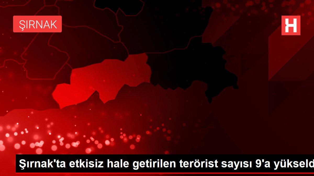 Şırnak'ta etkisiz hale getirilen terörist sayısı 9'a yükseldi