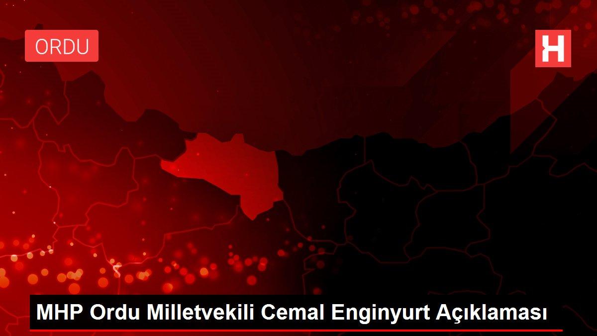 MHP Ordu Milletvekili Cemal Enginyurt Açıklaması