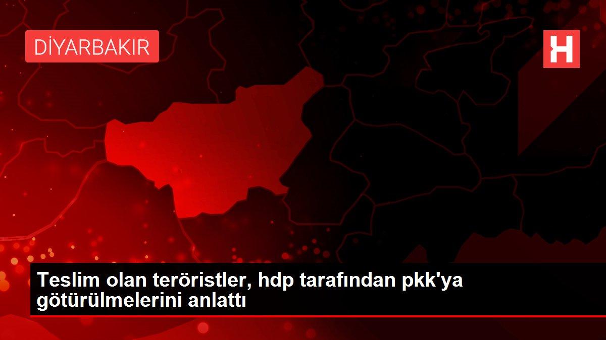 Teslim olan teröristler, hdp tarafından pkk'ya götürülmelerini anlattı