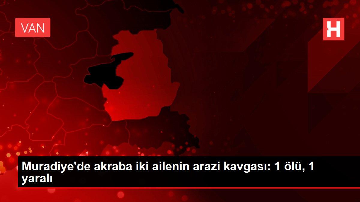Muradiye'de akraba iki ailenin arazi kavgası: 1 ölü, 1 yaralı