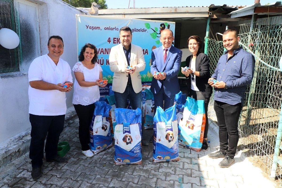 Turgutlu'da plastik kapaklar mama oluyor