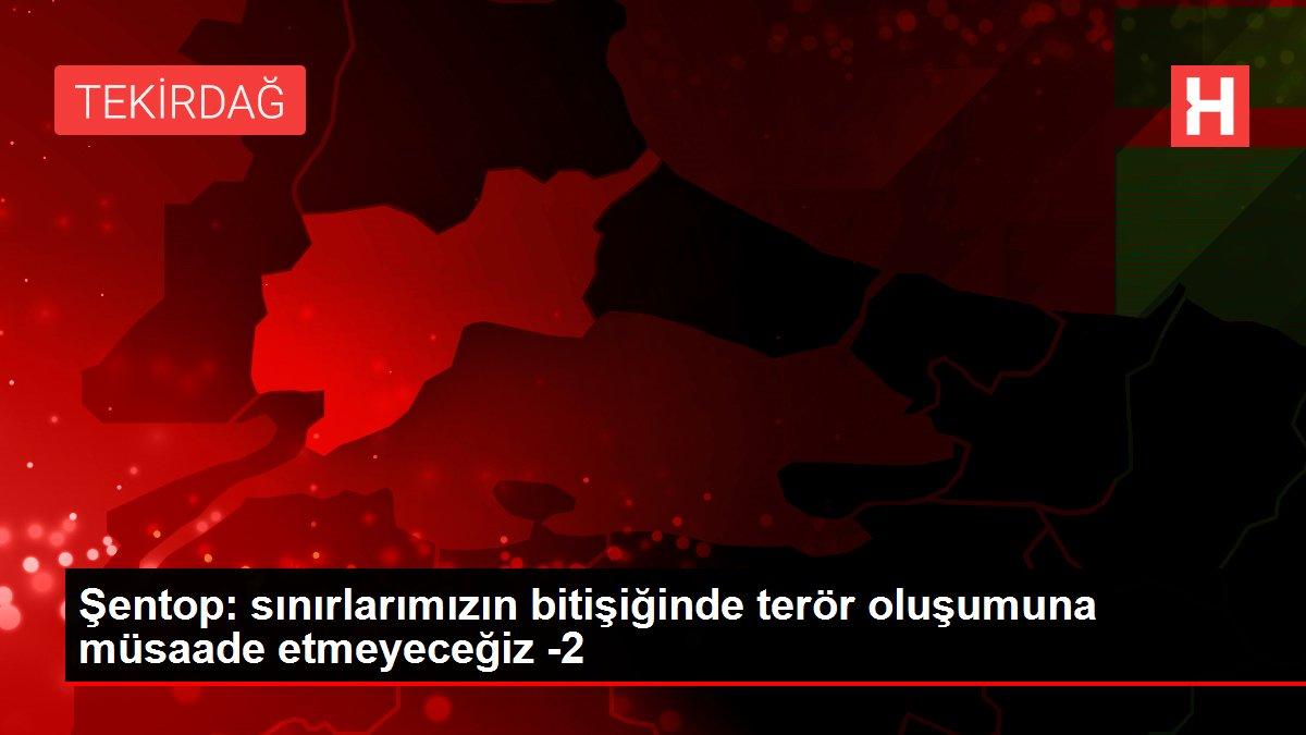 Şentop: sınırlarımızın bitişiğinde terör oluşumuna müsaade etmeyeceğiz -2