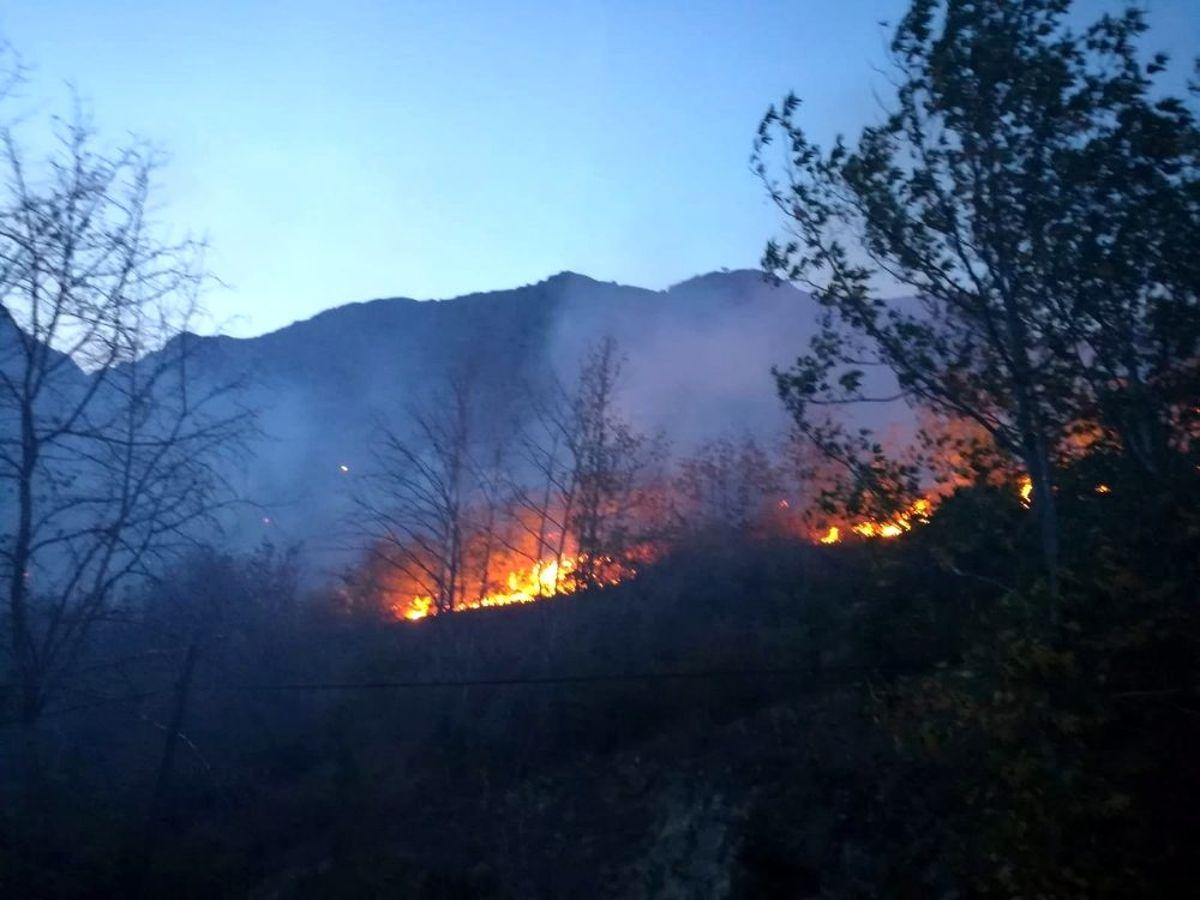 Kemaliye'de meyve ağaçları yanarak kül oldu