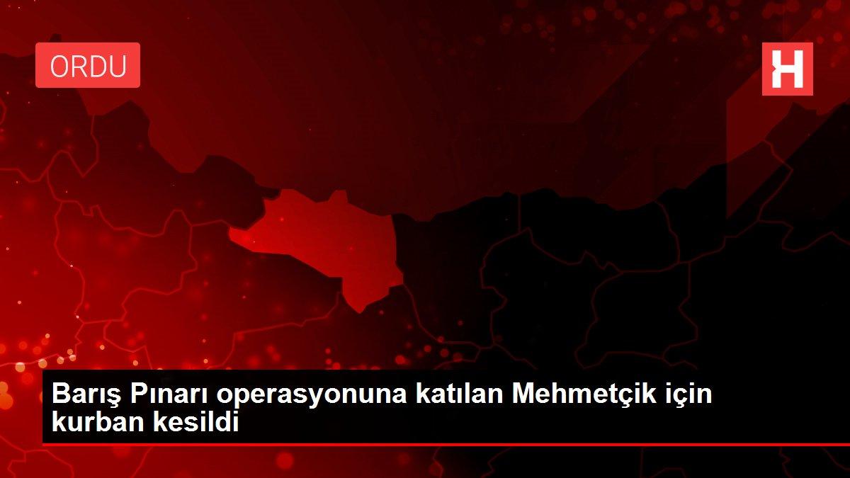 Barış Pınarı operasyonuna katılan Mehmetçik için kurban kesildi