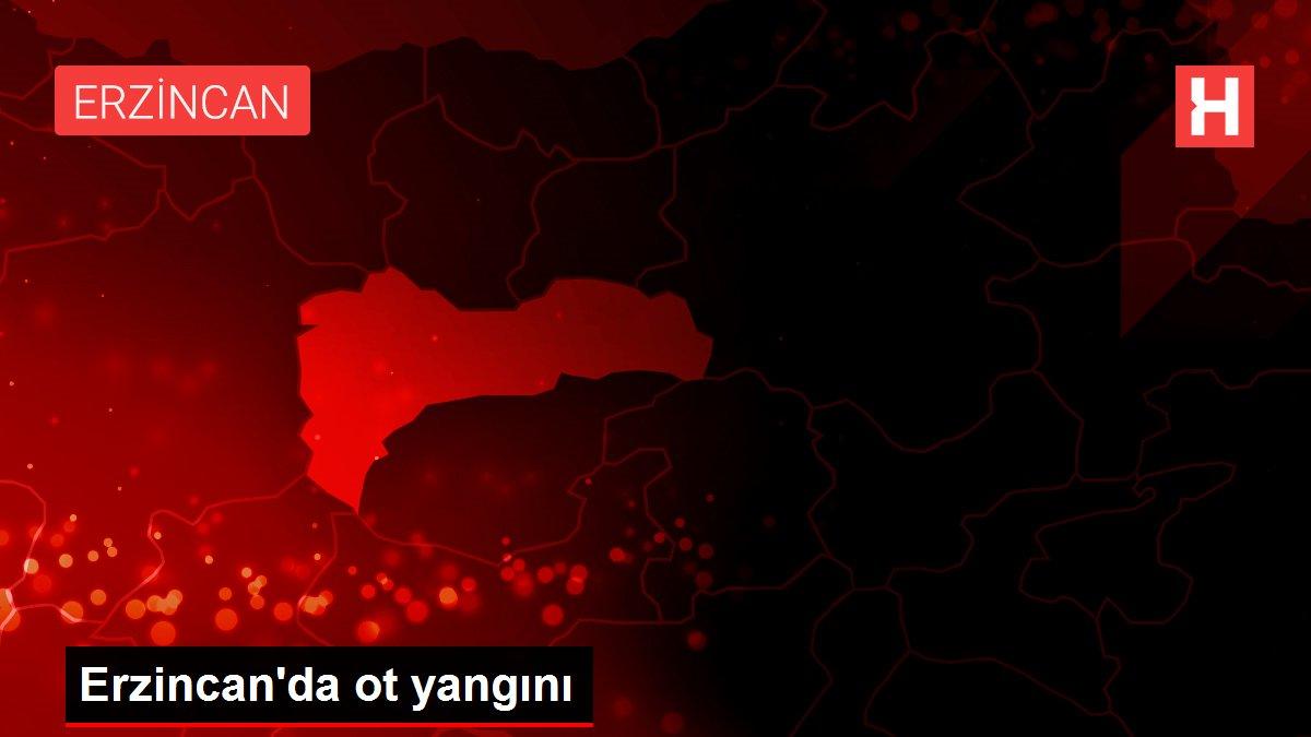 Erzincan'da ot yangını