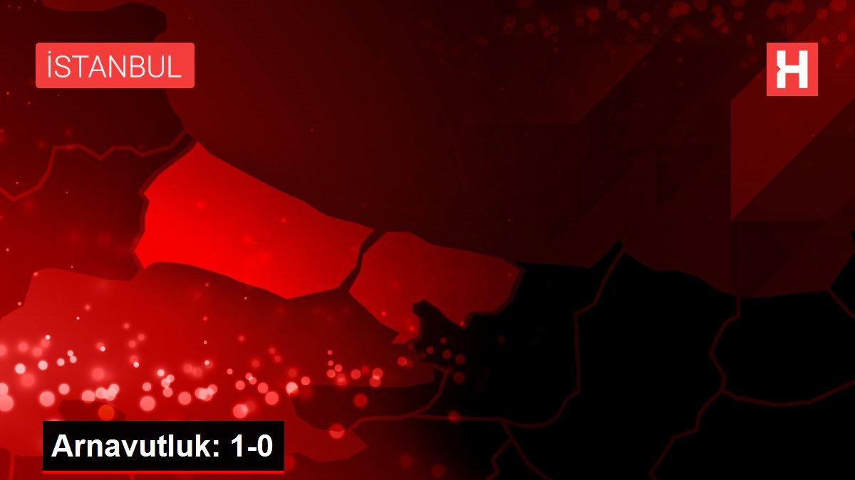 Arnavutluk: 1-0