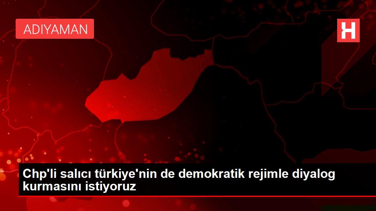 Chp'li salıcı türkiye'nin de demokratik rejimle diyalog kurmasını istiyoruz