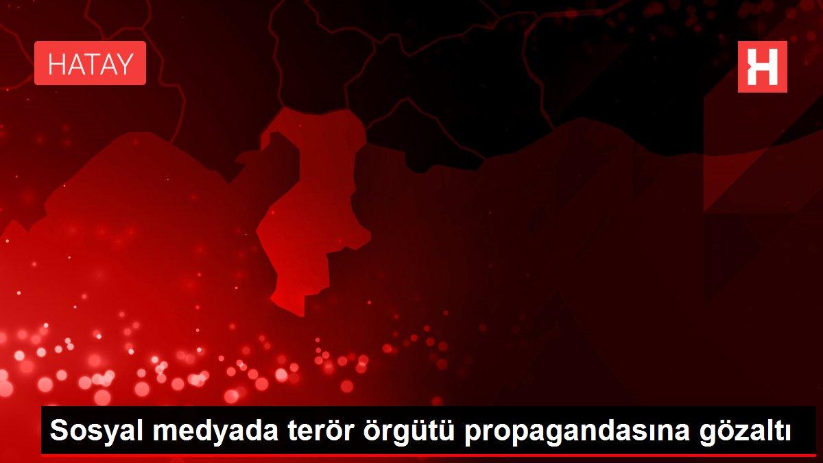 Sosyal medyada terör örgütü propagandasına gözaltı