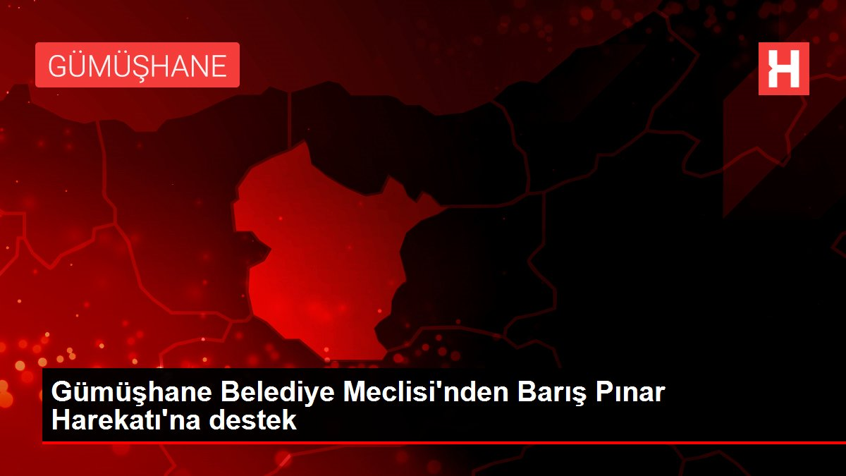Gümüşhane Belediye Meclisi'nden Barış Pınar Harekatı'na destek