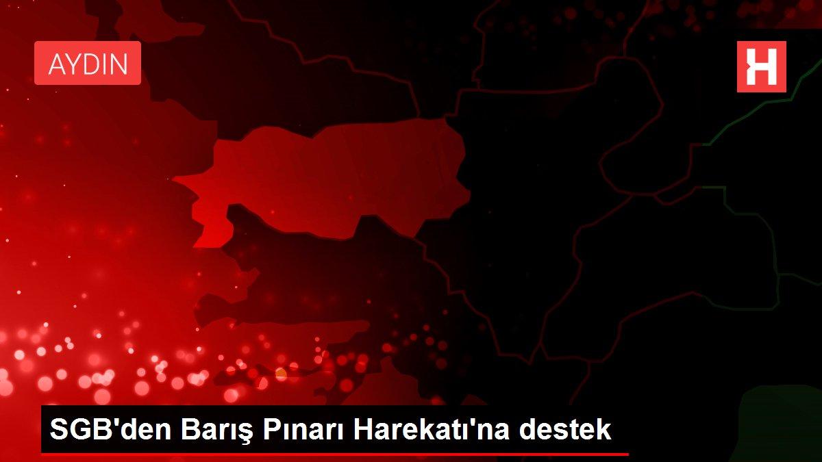 SGB'den Barış Pınarı Harekatı'na destek