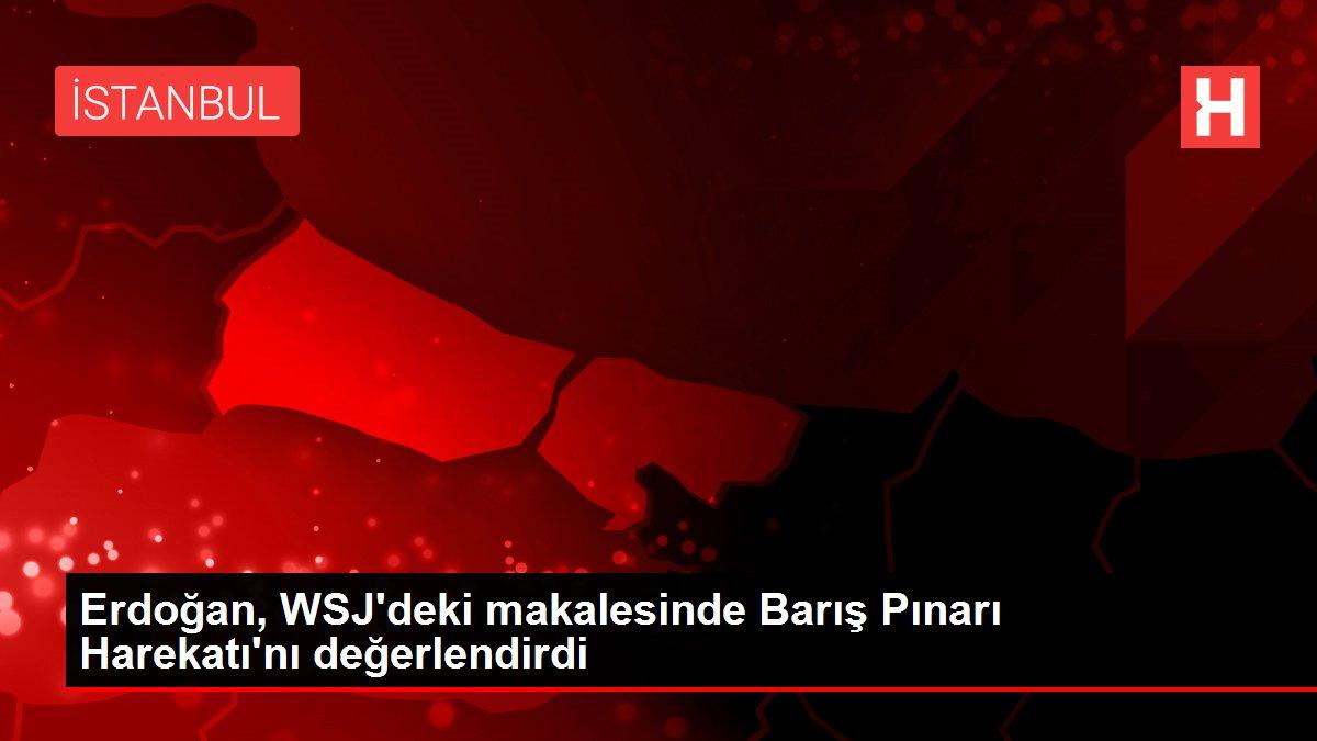 Erdoğan, WSJ'deki makalesinde Barış Pınarı Harekatı'nı değerlendirdi