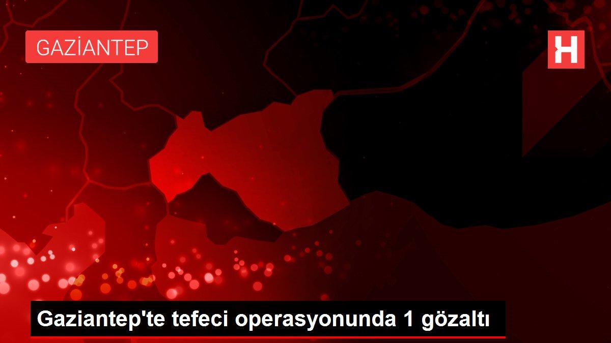 Gaziantep'te tefeci operasyonunda 1 gözaltı