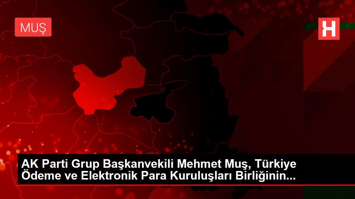 AK Parti Grup Başkanvekili Mehmet Muş, Türkiye Ödeme ve Elektronik Para Kuruluşları Birliğinin...