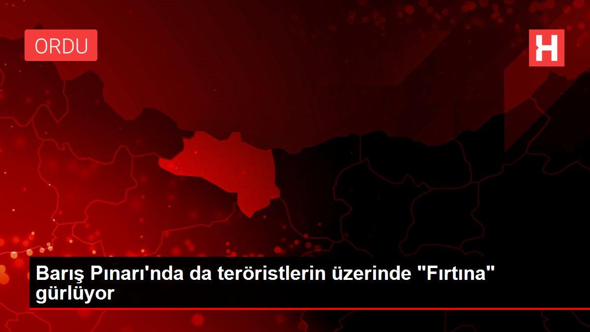 Barış Pınarı'nda da teröristlerin üzerinde