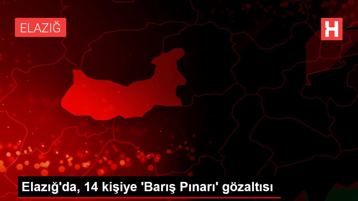 Elazığ'da, 14 kişiye 'Barış Pınarı' gözaltısı