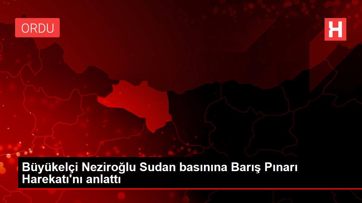 Büyükelçi Neziroğlu Sudan basınına Barış Pınarı Harekatı'nı anlattı