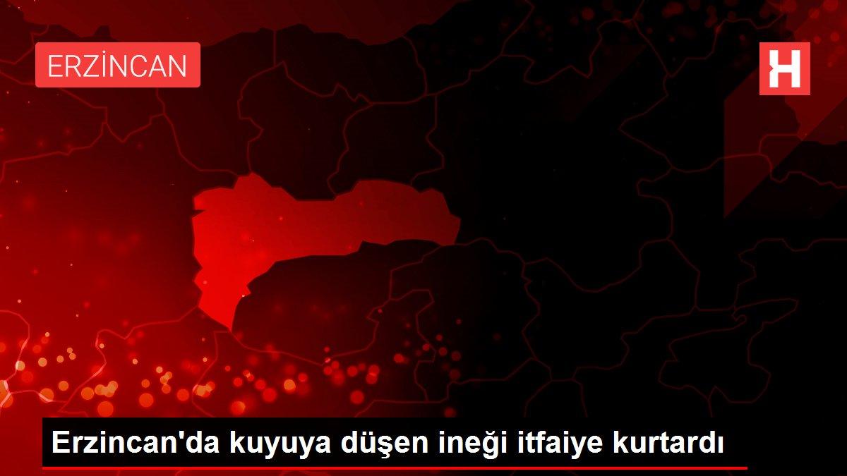 Erzincan'da kuyuya düşen ineği itfaiye kurtardı