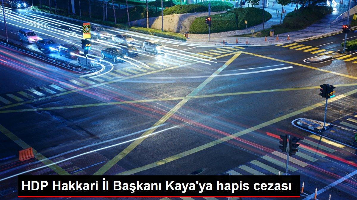 HDP Hakkari İl Başkanı Kaya'ya hapis cezası