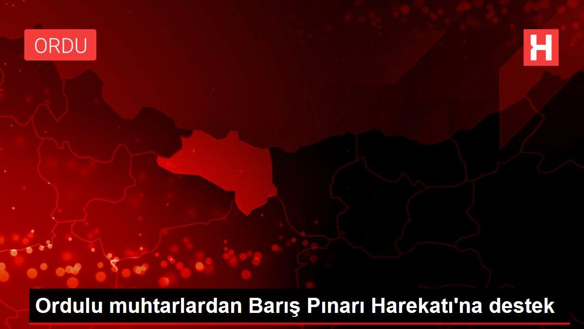 Ordulu muhtarlardan Barış Pınarı Harekatı'na destek