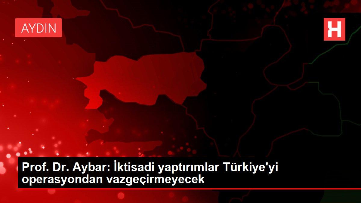 Prof. Dr. Aybar: İktisadi yaptırımlar Türkiye'yi operasyondan vazgeçirmeyecek