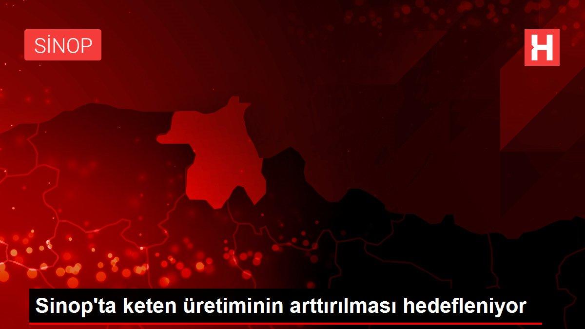Sinop'ta keten üretiminin arttırılması hedefleniyor