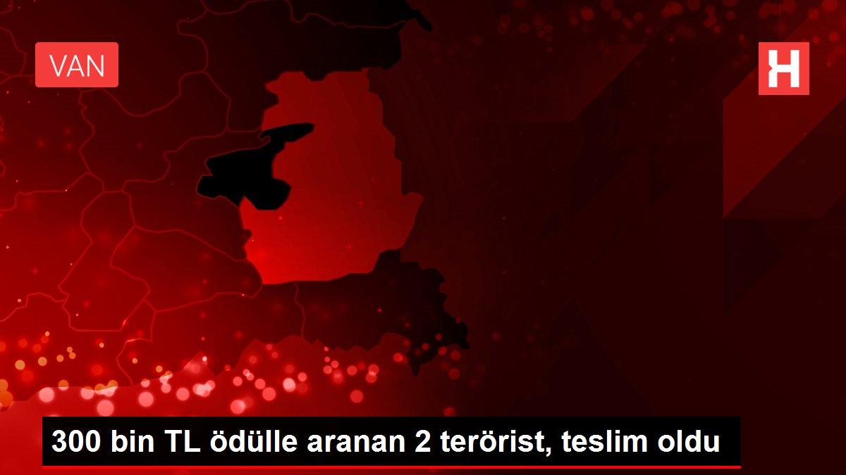300 bin TL ödülle aranan 2 terörist, teslim oldu