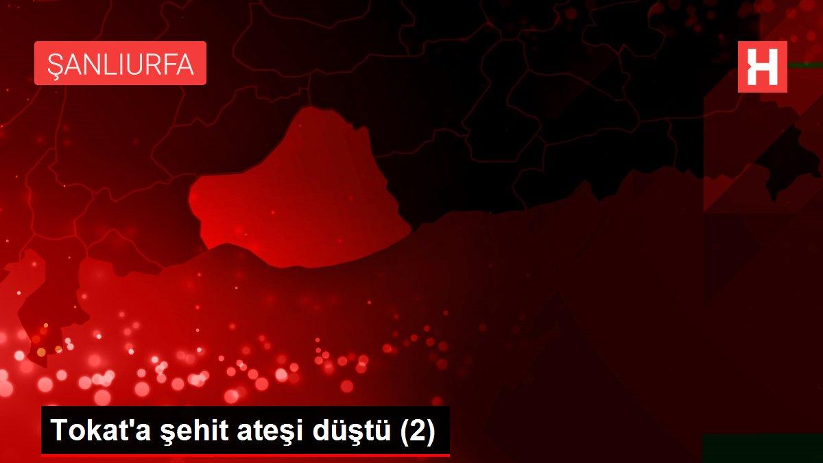 Tokat'a şehit ateşi düştü (2)