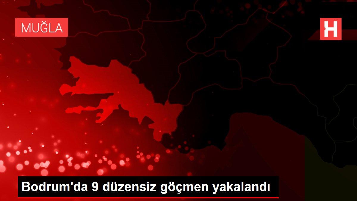 Bodrum'da 9 düzensiz göçmen yakalandı