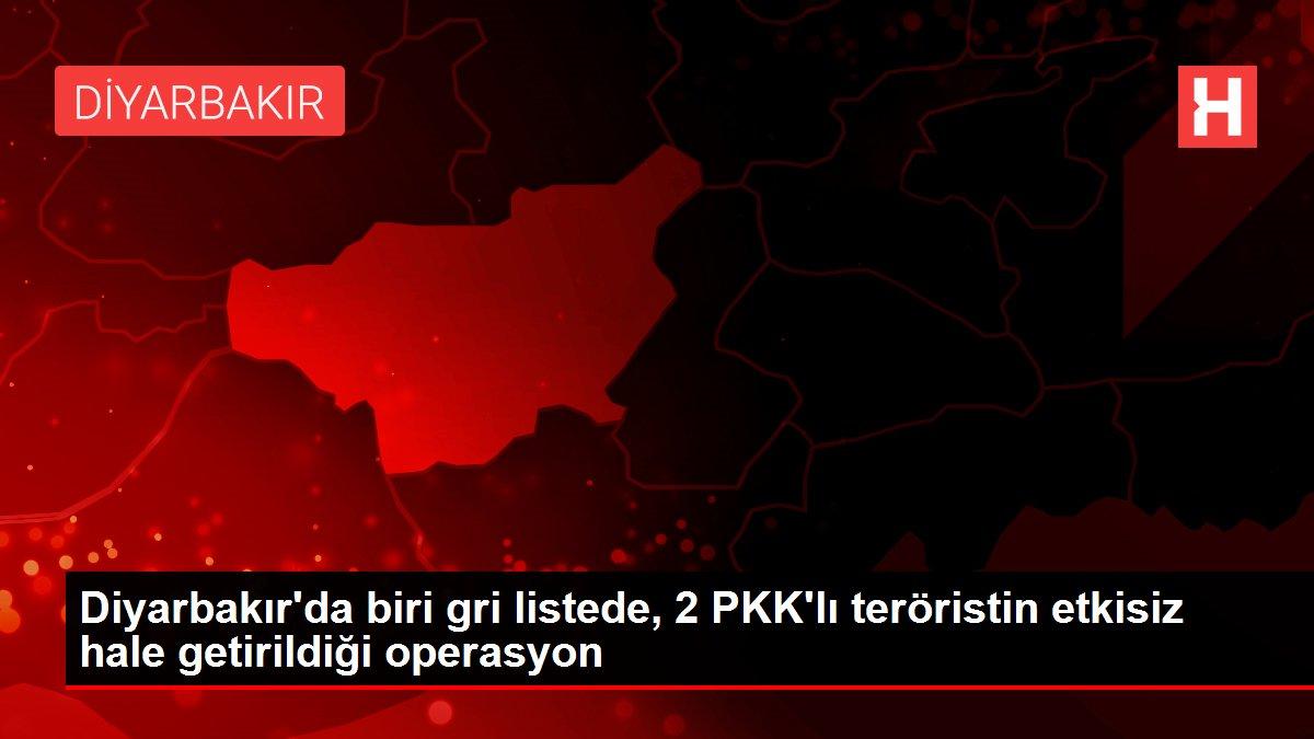 Diyarbakır'da biri gri listede, 2 PKK'lı teröristin etkisiz hale getirildiği operasyon