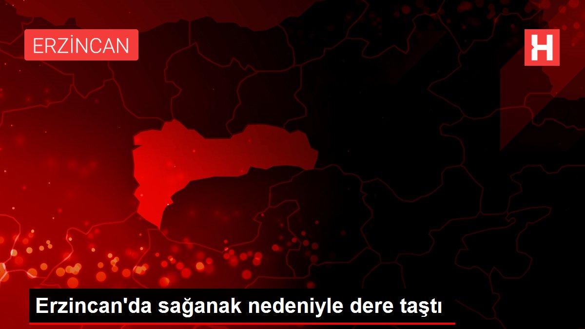 Erzincan'da sağanak nedeniyle dere taştı