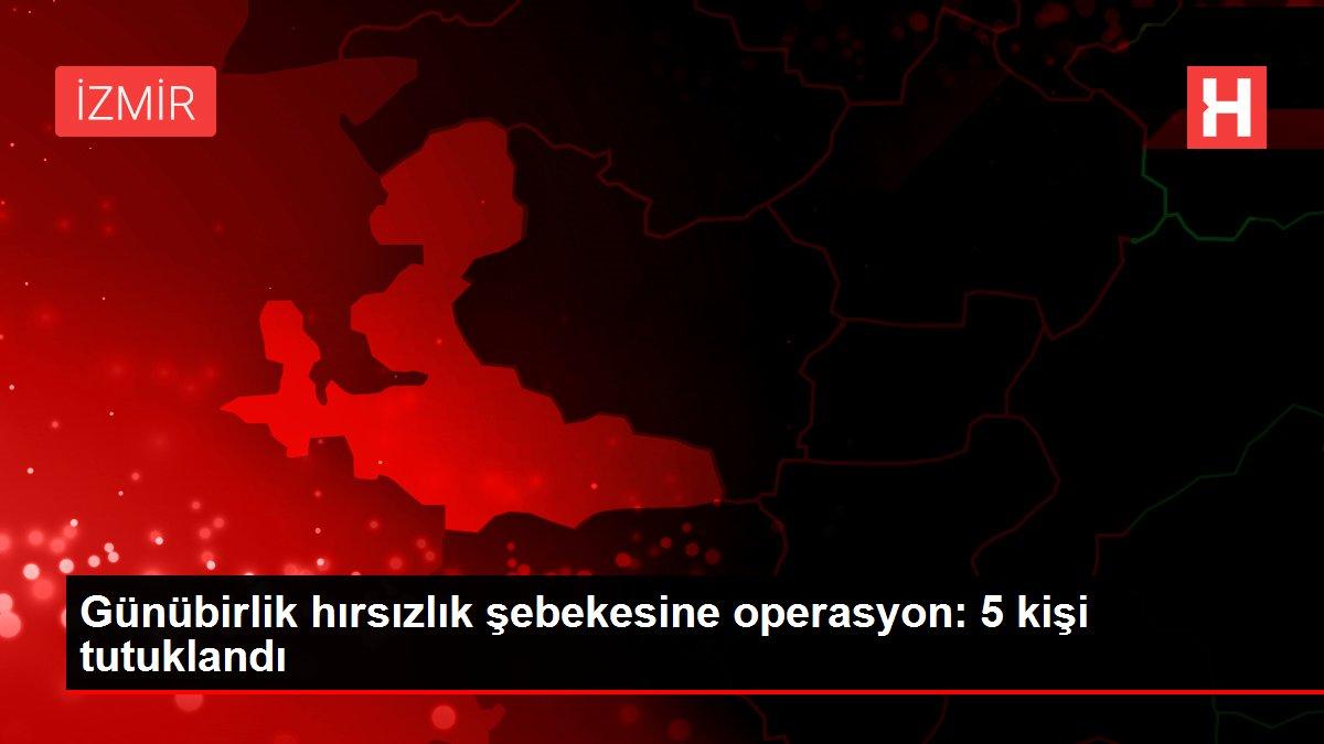 Günübirlik hırsızlık şebekesine operasyon: 5 kişi tutuklandı