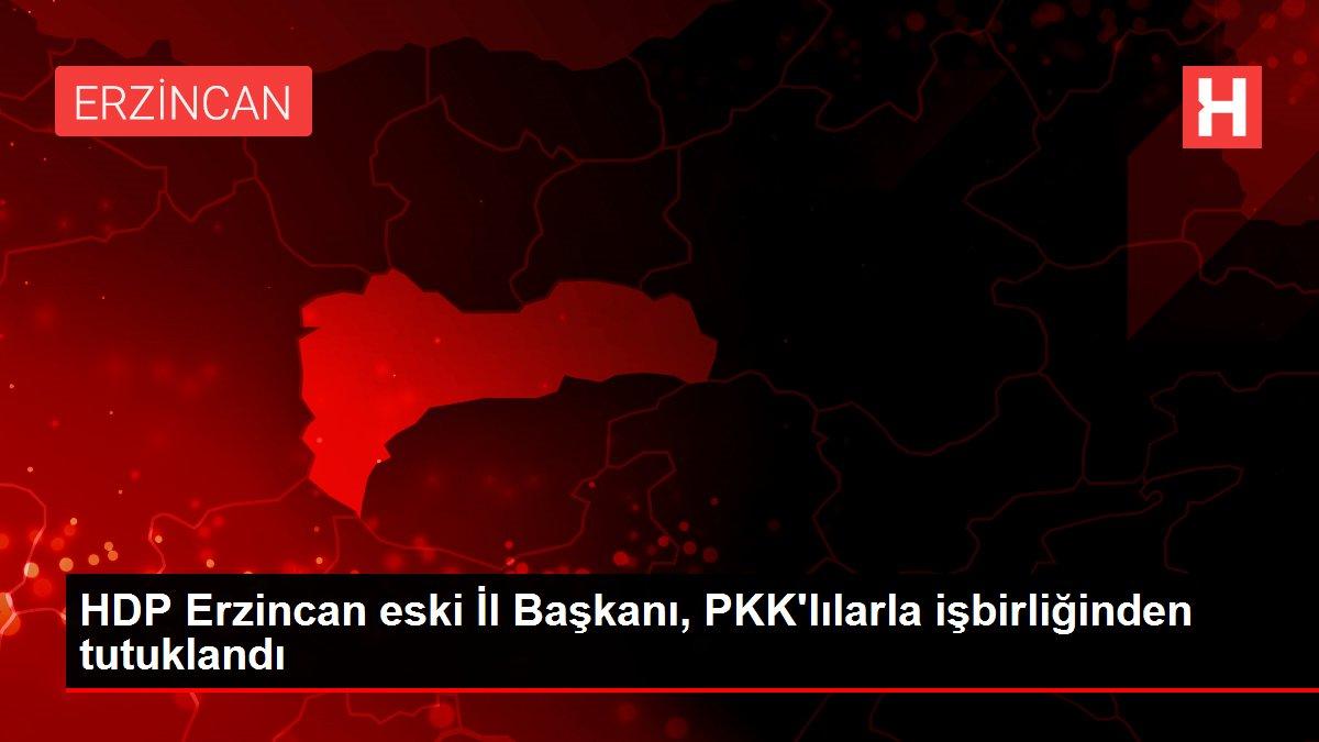 HDP Erzincan eski İl Başkanı, PKK'lılarla işbirliğinden tutuklandı