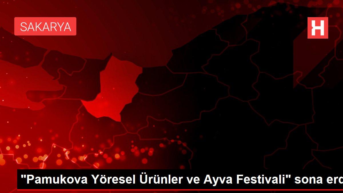 Pamukova Yöresel Ürünler ve Ayva Festivali sona erdi