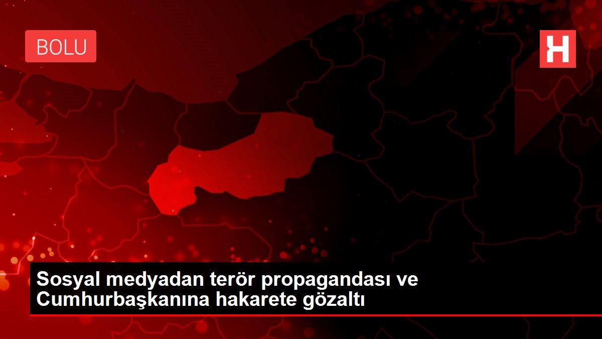 Sosyal medyadan terör propagandası ve Cumhurbaşkanına hakarete gözaltı