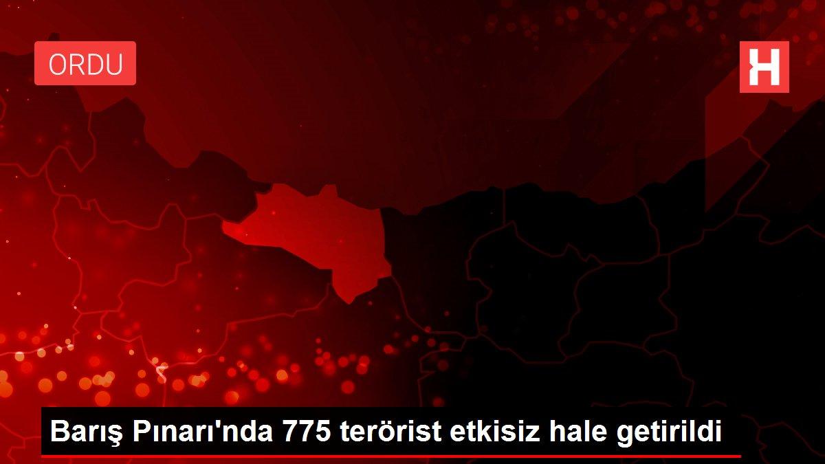Barış Pınarı'nda 775 terörist etkisiz hale getirildi