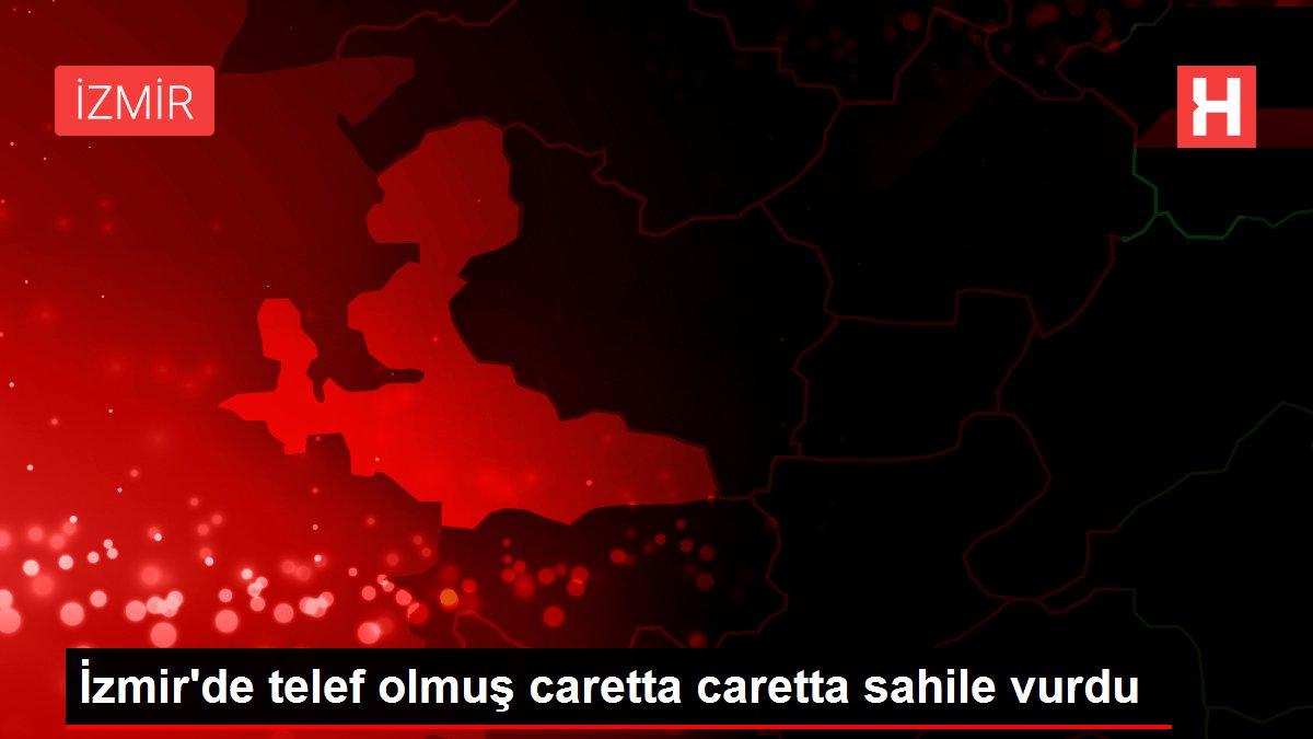 İzmir'de telef olmuş caretta caretta sahile vurdu