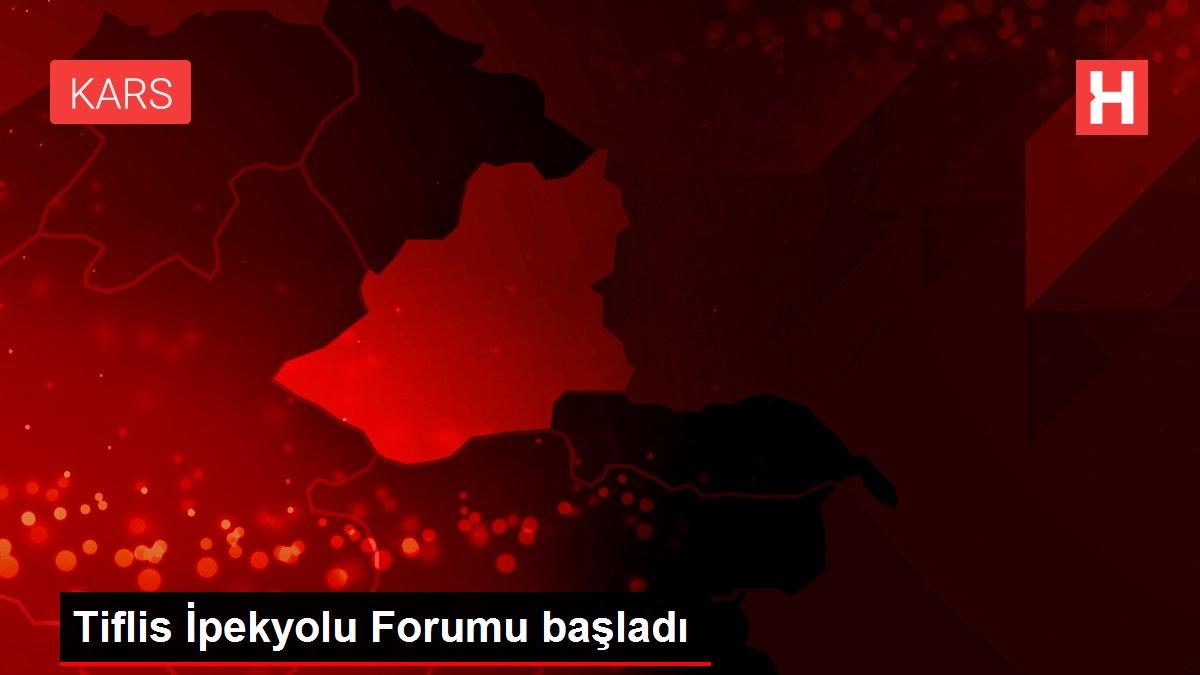 Tiflis İpekyolu Forumu başladı