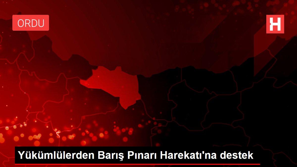 Yükümlülerden Barış Pınarı Harekatı'na destek