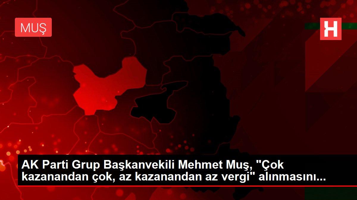 AK Parti Grup Başkanvekili Mehmet Muş,