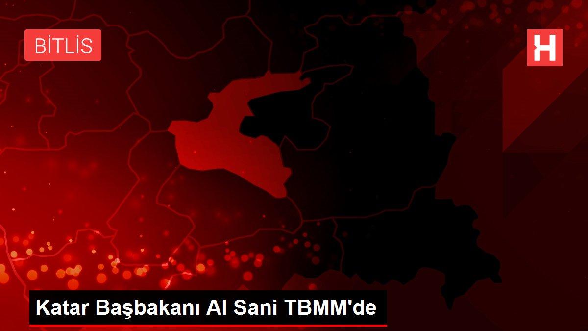 Katar Başbakanı Al Sani TBMM'de