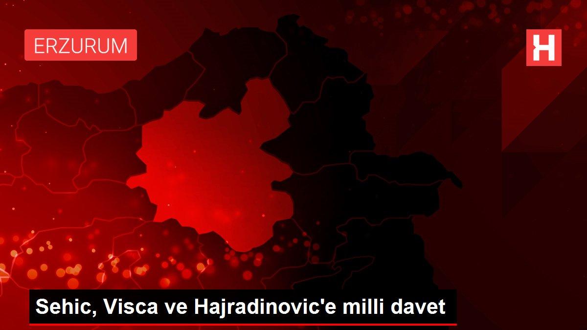 Sehic, Visca ve Hajradinovic'e milli davet