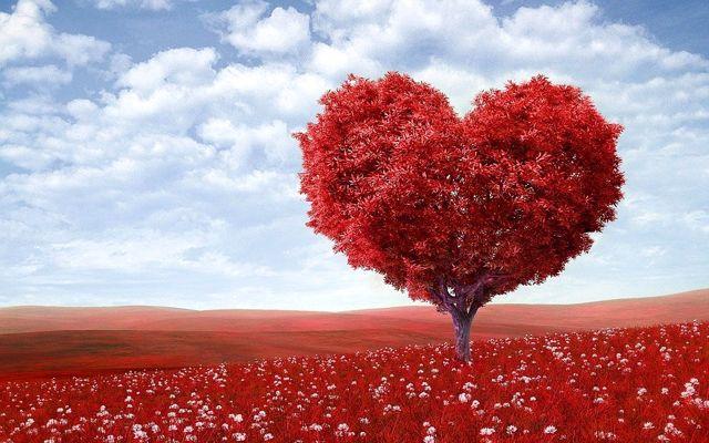 Sevgililer günü hediyeleri, sevgiliye hediye tavsiyeleri ve en güzel sevgililer günü sözleri