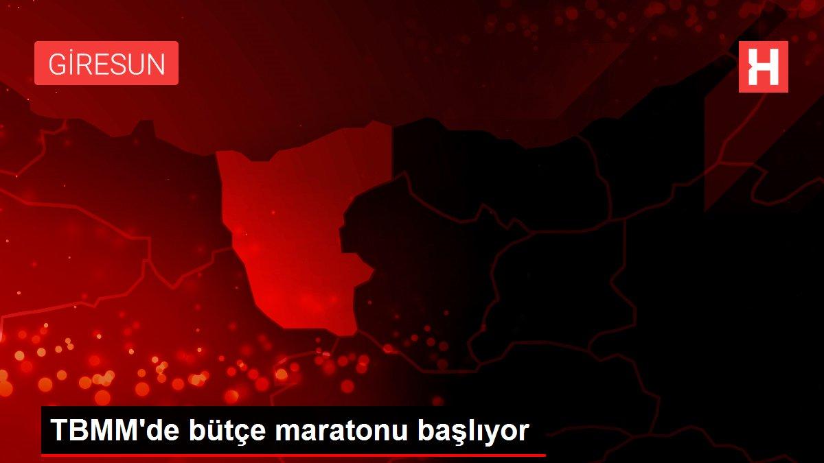 TBMM'de bütçe maratonu başlıyor