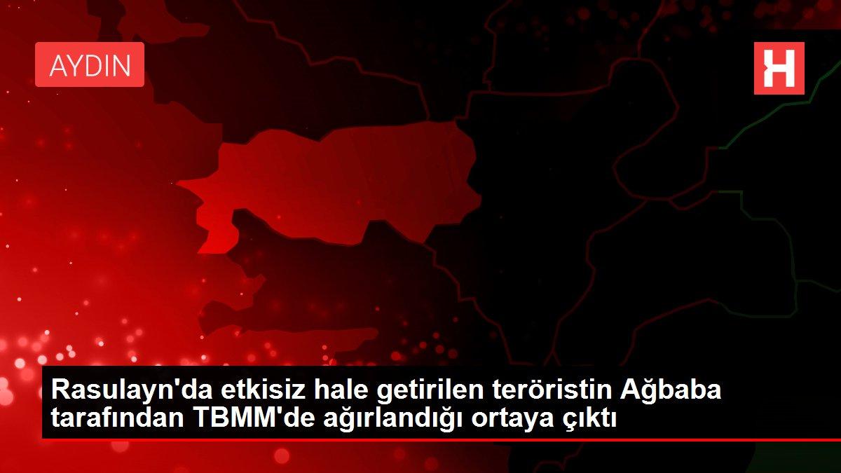 Rasulayn'da etkisiz hale getirilen teröristin Ağbaba tarafından TBMM'de ağırlandığı ortaya çıktı