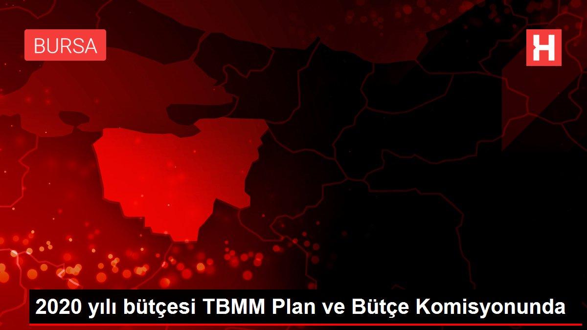 2020 yılı bütçesi TBMM Plan ve Bütçe Komisyonunda