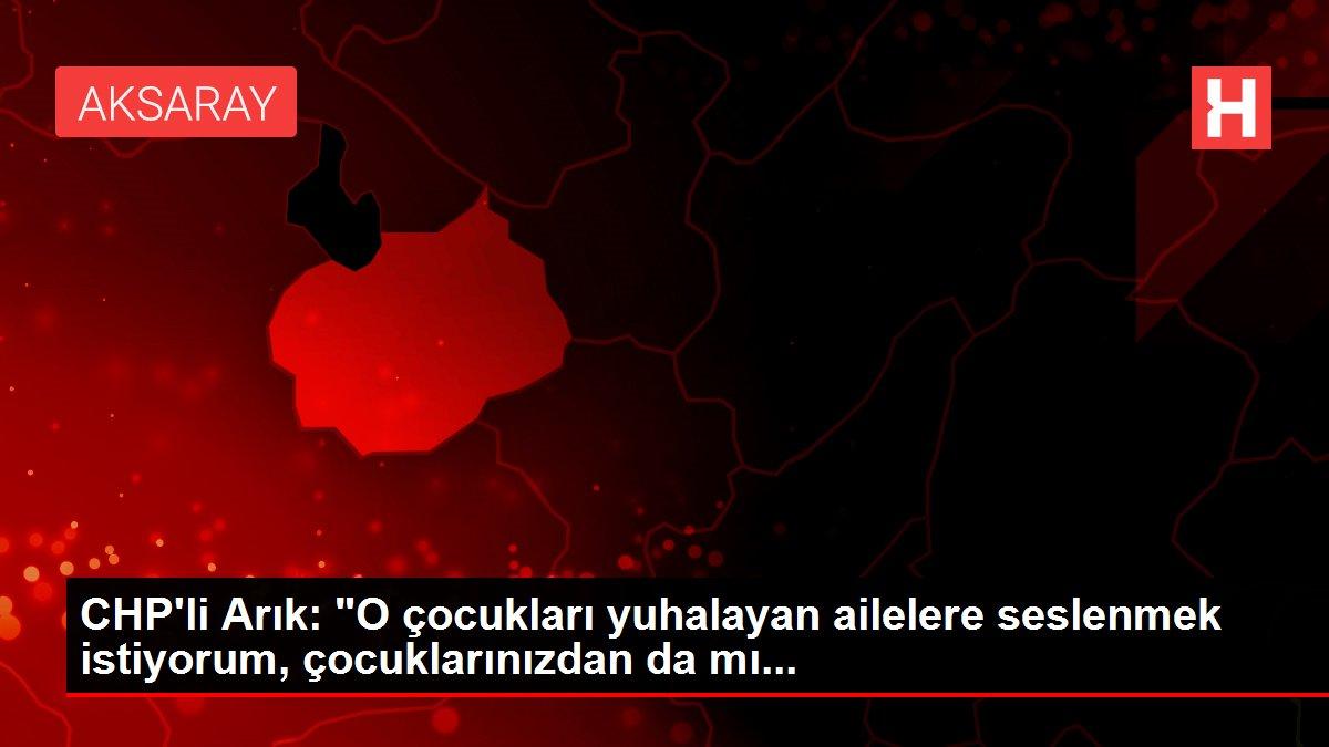 CHP'li Arık: