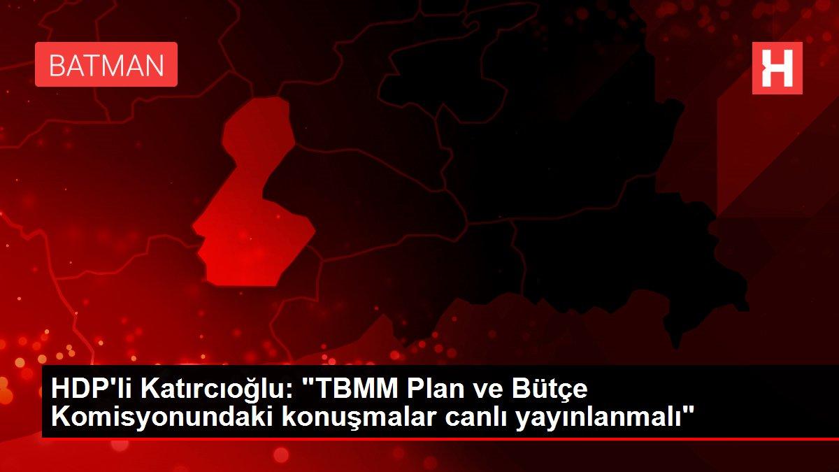 HDP'li Katırcıoğlu: 'TBMM Plan ve Bütçe Komisyonundaki konuşmalar canlı yayınlanmalı'