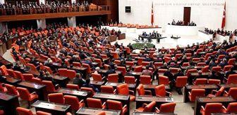 Zazaca konuşma Meclis'i karıştırdı! Milletvekillleri, HDP'li vekile tepki gösterdi