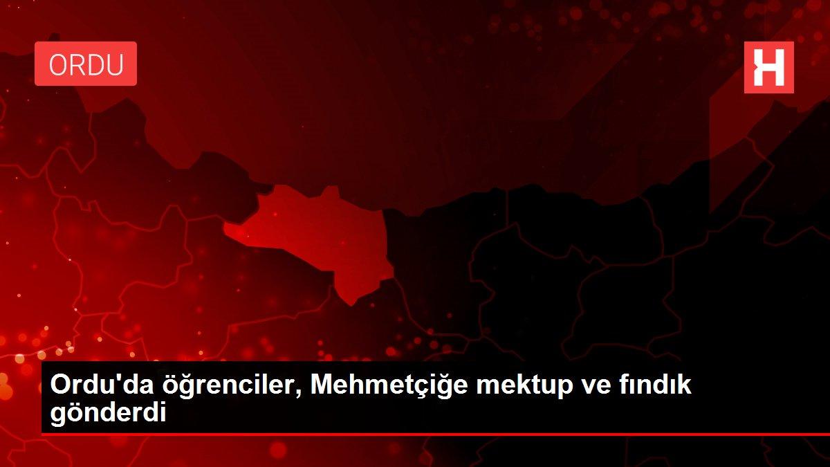 Ordu'da öğrenciler, Mehmetçiğe mektup ve fındık gönderdi