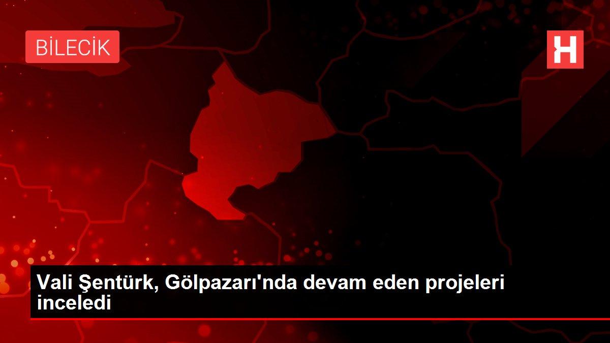 Vali Şentürk, Gölpazarı'nda devam eden projeleri inceledi